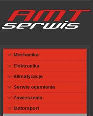 AMT SERWIS